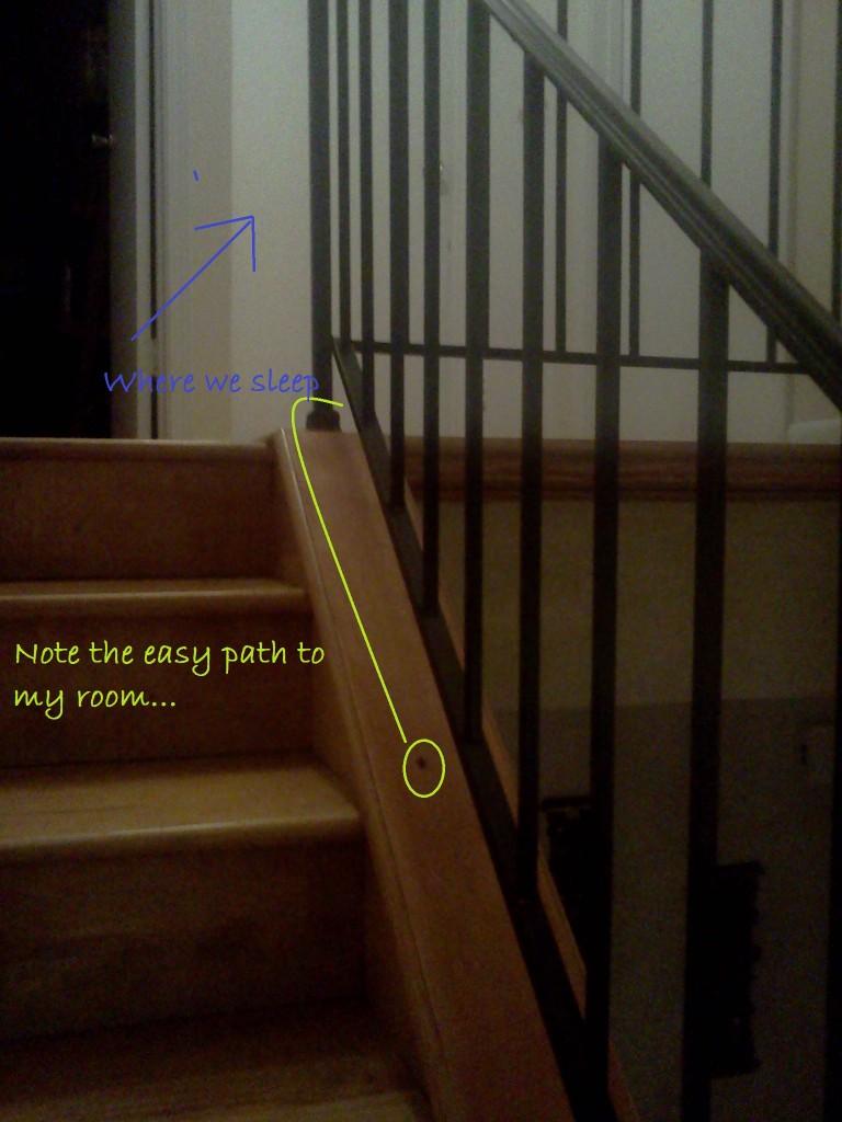 Death Bug's Path to My Room
