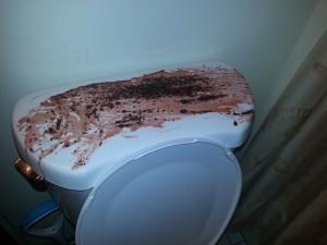 Blood all over the toilet scary Halloween bathroom decor