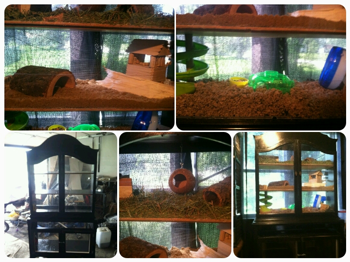 homemade hamster cages