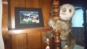 Sloth and Lillian Connelly artPhoto captured with Sharp AQUOS Crystal