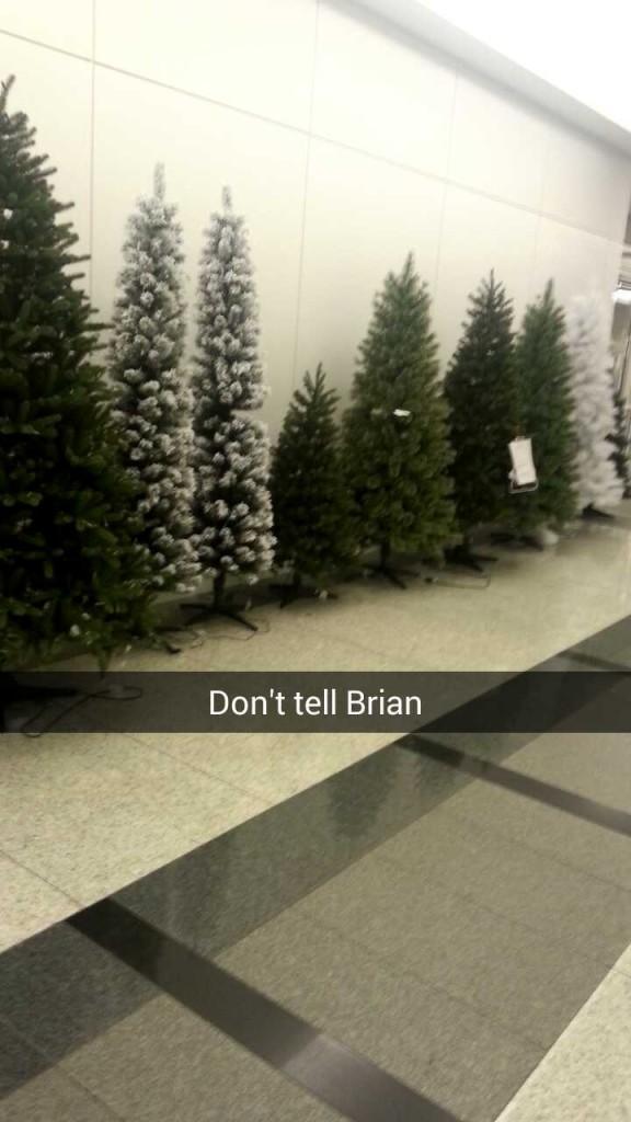 Sometimes I snap things Brian won't like